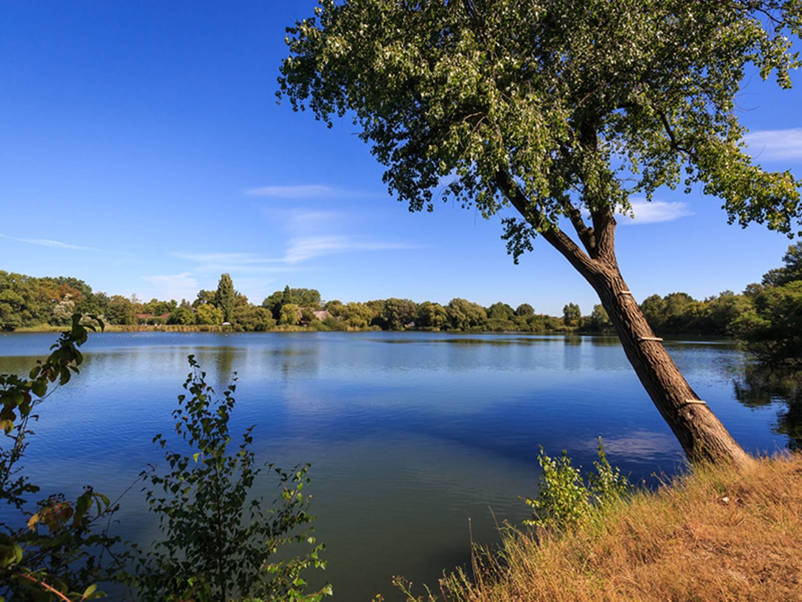 Berenbosteler See in Garbsen