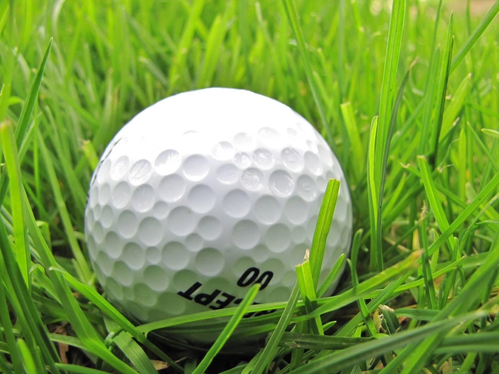 Golfball im Gras