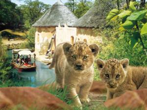 Zwei Löwenbabys vor der Sambesi-Landschaft des Erlebnis-Zoos Hannover.