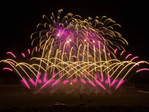 Feuerwerk Dragon Fireworks
