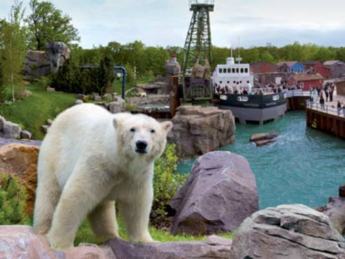 Eisbär vor der Yukon Bay Landschaft im Erlebnis-Zoo Hannover