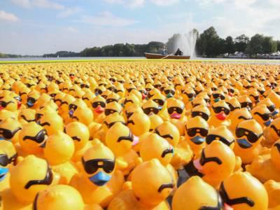 NKR Duck-Fun(d)racing: Charity-Entenrennen