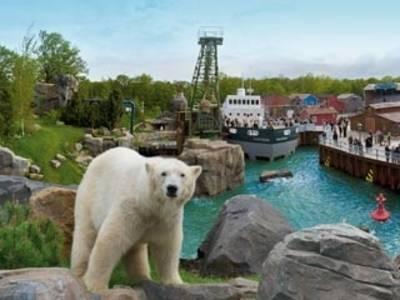 Oso polar en Yukon Bay