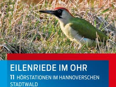"""Teilauschnitt des Titelbilds der Broschüre """"Eilenriede im Ohr - 11 Hörstationen im Hannoverschen Stadtwald"""", auf dem ein Grünspecht im Gras zu sehen ist."""