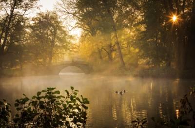 Die Augustenbrücke im Georgengarten erscheint auf dem Bild von Lars Gerhardts im morgendlichen Glanz im November.