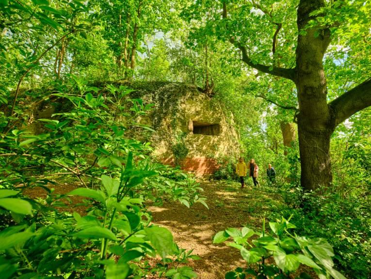 Ausflugsziel: Die Ruinen der ehemaligen Burg Calenberg