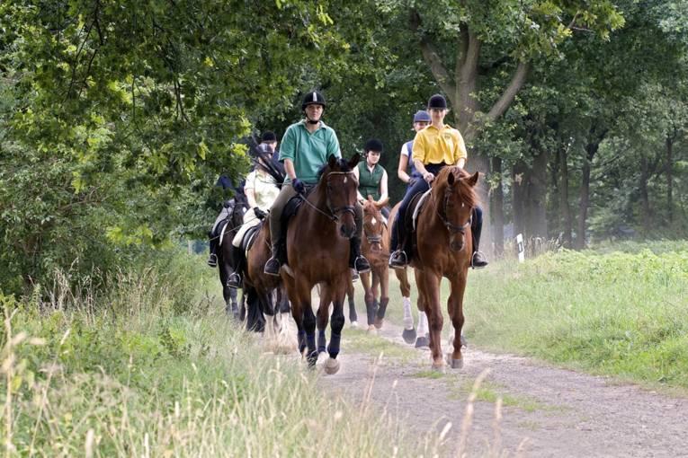 Ausreiten in der Pferderegion