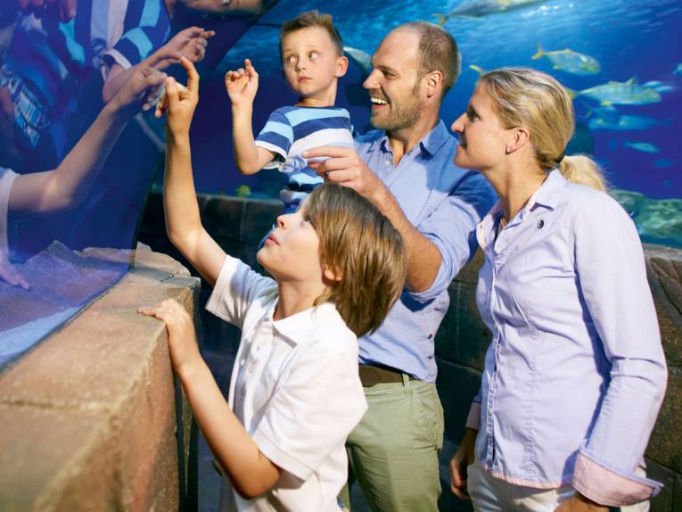 Family in Sea Life Hannover