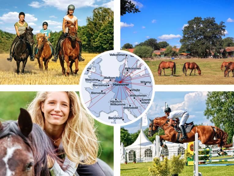 Willkommen in der Pferderegion