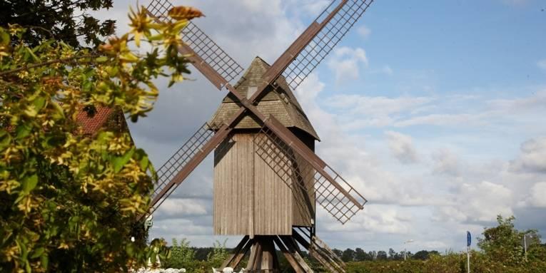 Eine Frontalaufnahme der Sorgenser Mühle