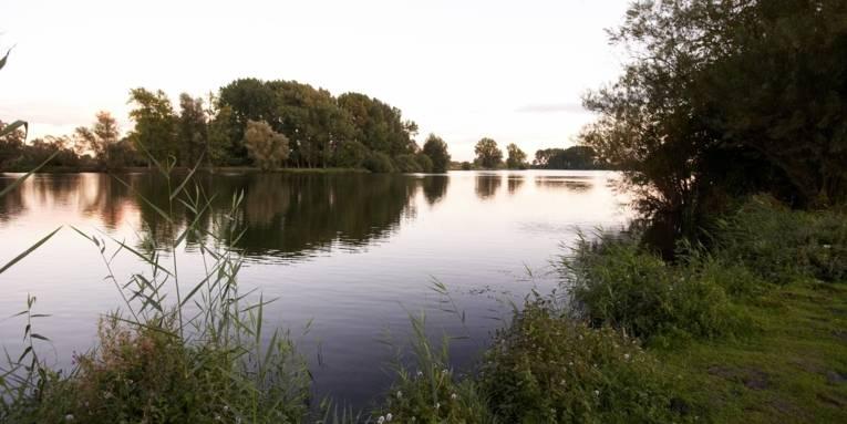 Wilkenburg Teiche