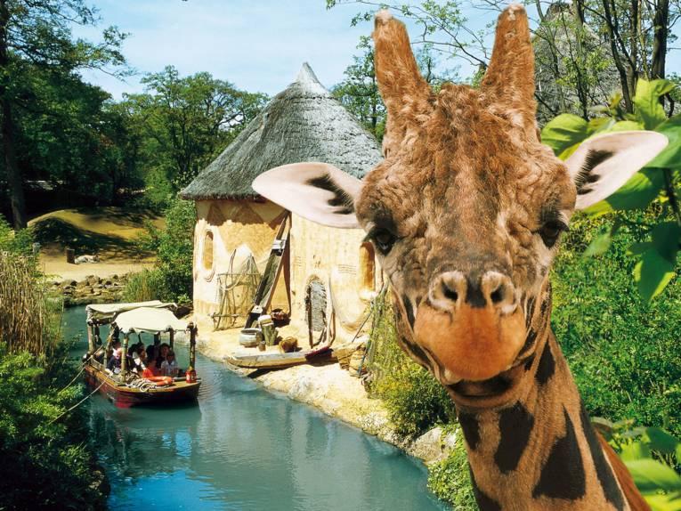 Sambesi-Landschaft im Erlebnis-Zoo Hannover