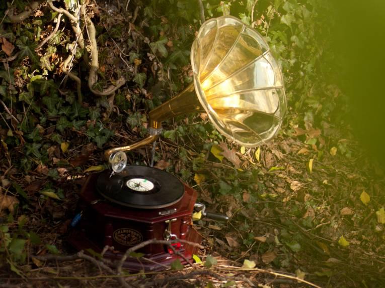 Grammophon