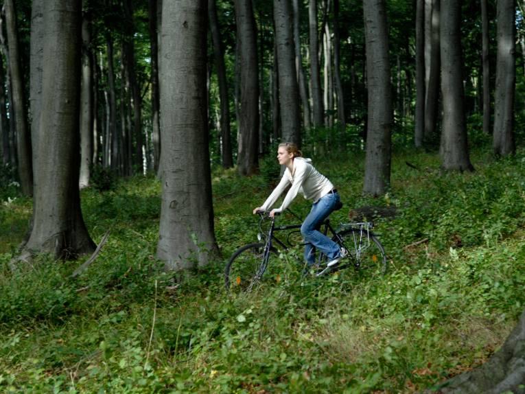 Frau fährt mit einem Fahrrad talwärts durch einen Wald.