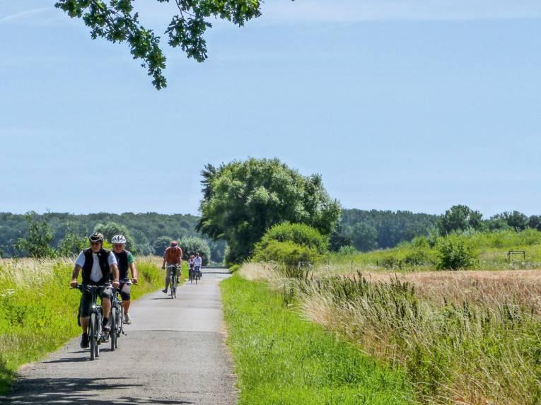 Fahrradfahrer radeln Feldweg entlang