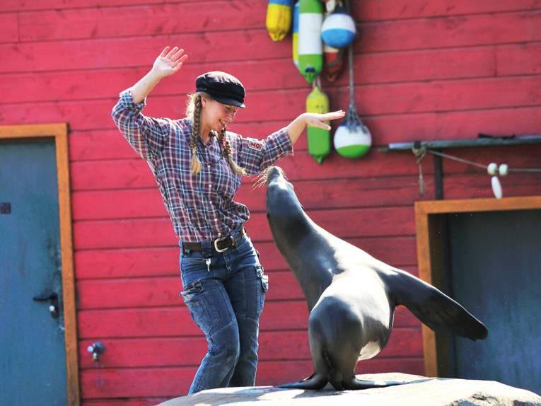 Pflegerin bei der Robbenshow im Yukon Bay im Erlebnis Zoo Hannover