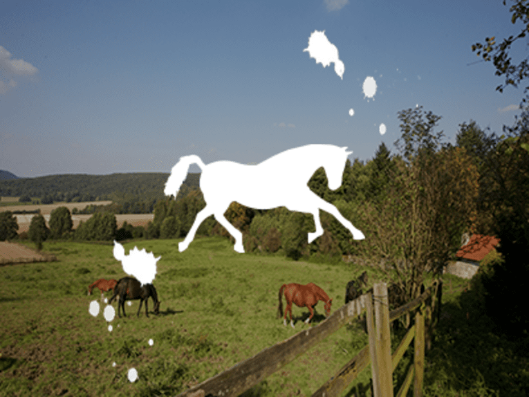 Reiten in der Pferderegion Hannover