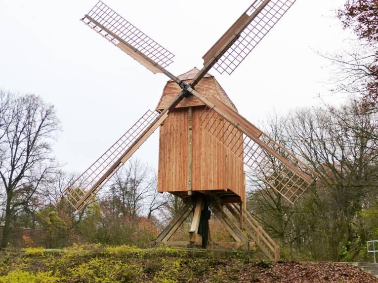 Renovierte Bockwindmühle auf einer Anhöhe