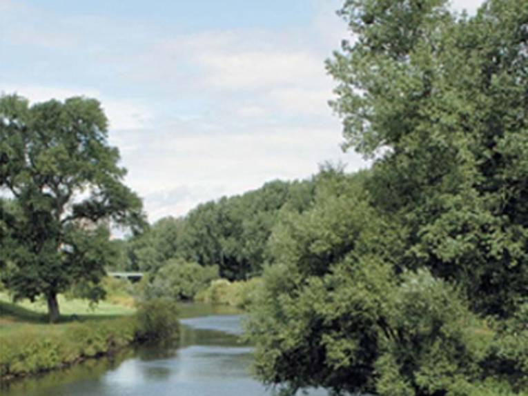 Flußufer