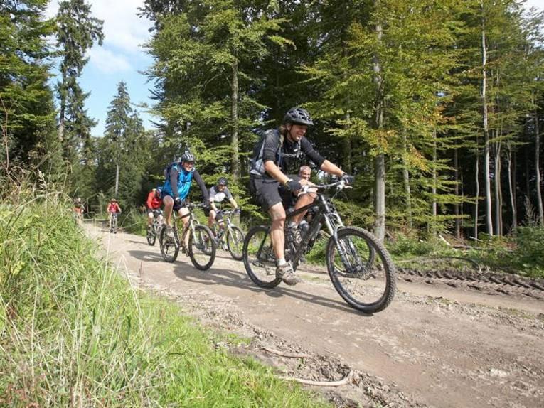 Mountainbiking Deister
