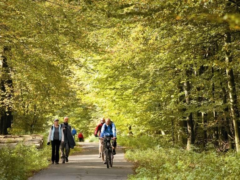 Radwanderer im Deister
