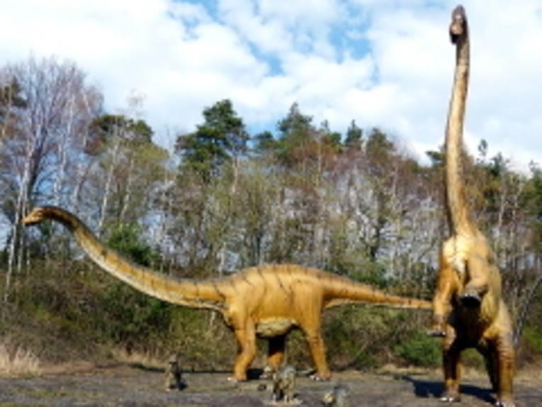 Pflanzenfressende Langhalsdinosaurier im Dinosaurier Park Münchehagen.