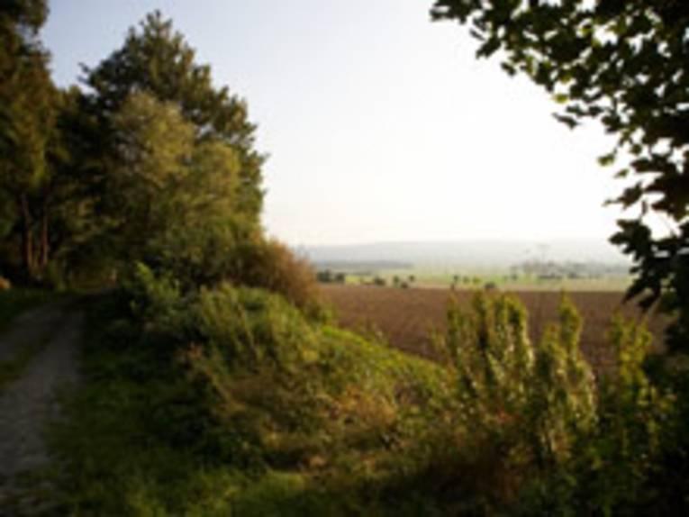 Erholungsgebiete Gehrdener und Benther Berg