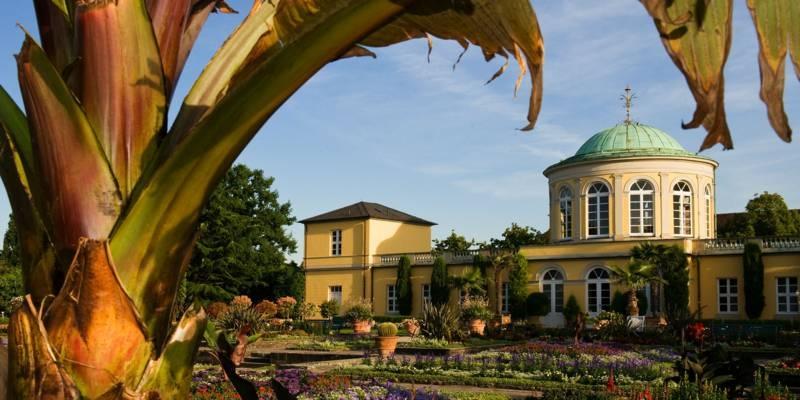 Man sieht im Vordergrund den Berggarten von Herrenhausen und im Hintergrund das Schloss der Herrenhäuser Gärten.