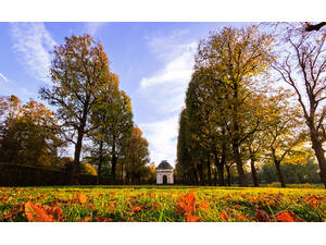 Royal garden in autumn