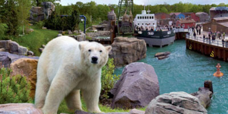 Eisbär vor Yukon Bay Kulisse