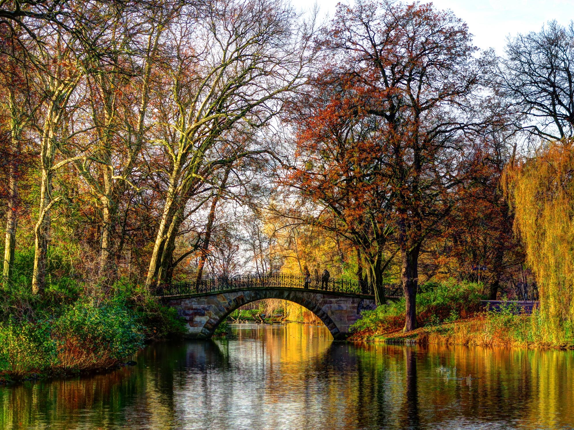Kleine Brücke über ein Gewässer, umrahmt von Bäumen und Büschen mit verschiedenfarbenen Herbstlaub.